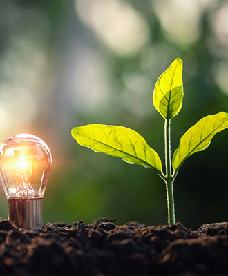 Lightbulb giving light to a plant